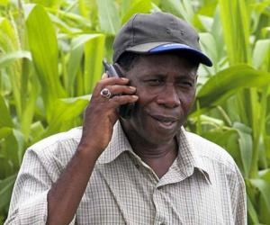 Evidence patchy on value of mobile apps for farmers