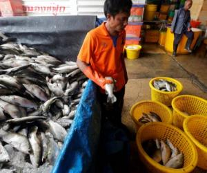 Sinking feeling for Asean fisheries