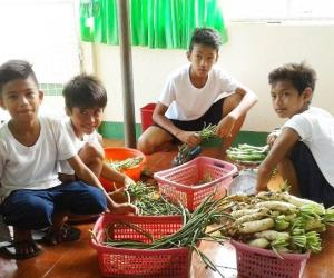 Assessment of garden produce utilization ongoing in pilot schools