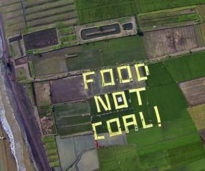 Coal undermines Indonesia's food production: report