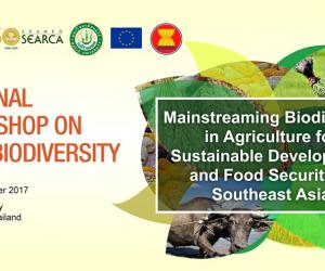 Regional workshop on agrobiodiversity focuses on mainstreaming biodiversity in agriculture for sustainable development and food security