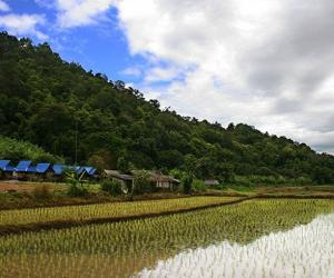 Future Of Agriculture And Implications For ASEAN – Analysis
