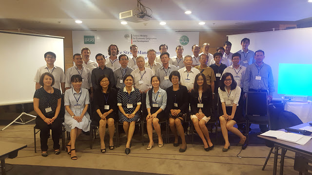 Rice experts gathered to chart future pathways for the rice straw market. The IRRI -BMZ rice straw project is investigating  ways to find new market outlets and developing value chains for rice straw.