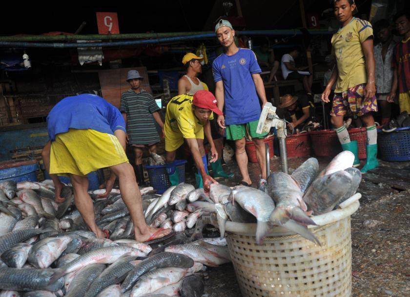 Workers unloading fish supplies at the San Pya fish market in Yangon. Photo: The Myanmar Times