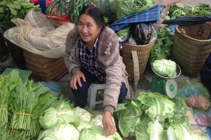 Lu Thị Cọt sells her vegetables in the Sunday Market, Bac Ha, Lao Cai Province, Vietnam (ABC Rural: Cassandra Hough)