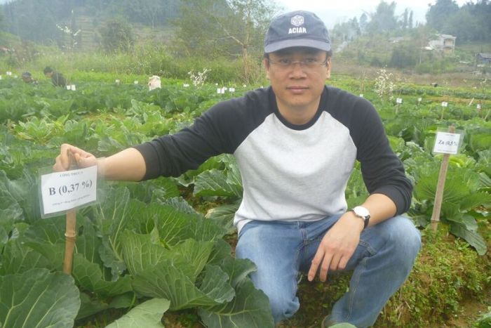 Dr Tran Minh Tien, deputy director of the Soils and Fertilisers Research Institute (in Hanoi) pictured in one of the project's micronutrient trials in Na Kheo Commune, Bac Ha District, Lao Cai Province, Vietnam. (ABC Rural: Cassandra Hough)