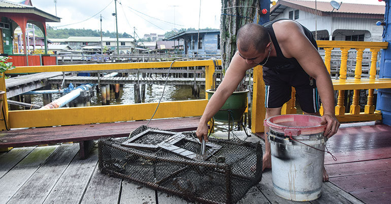 A fisherman checks his traps