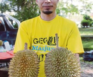 Govt wants to export durian kampung