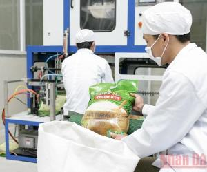 Enhancing added value for rice industry