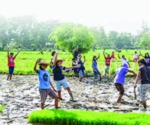 How to Engage the Youth, Teach Agriculture in Senior High School