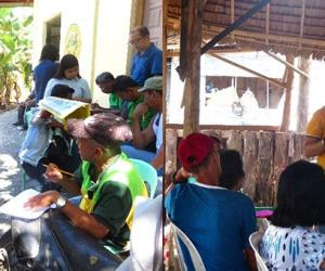 Baseline study for pests and diseases of calamansi conducted by SEARCA and UPLB