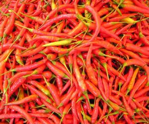 Let's Talk Food: It's all about chili peppers
