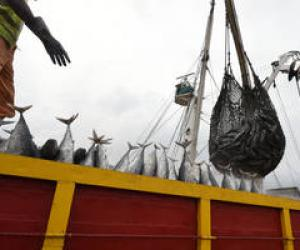 Sustainable use of oceans requires end to illegal fishing