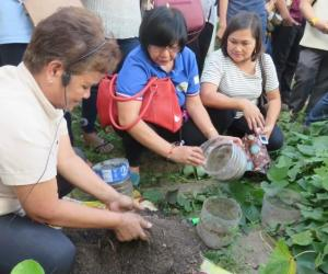 Taking the SEARCA-DepEd-UPLB school and home gardens project to scale