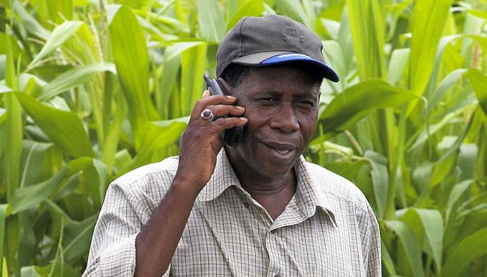 Farmer Oumar Sakho, 50, stands in his corn field using a mobile phone in Sangalkam, Senegal Copyright: Panos