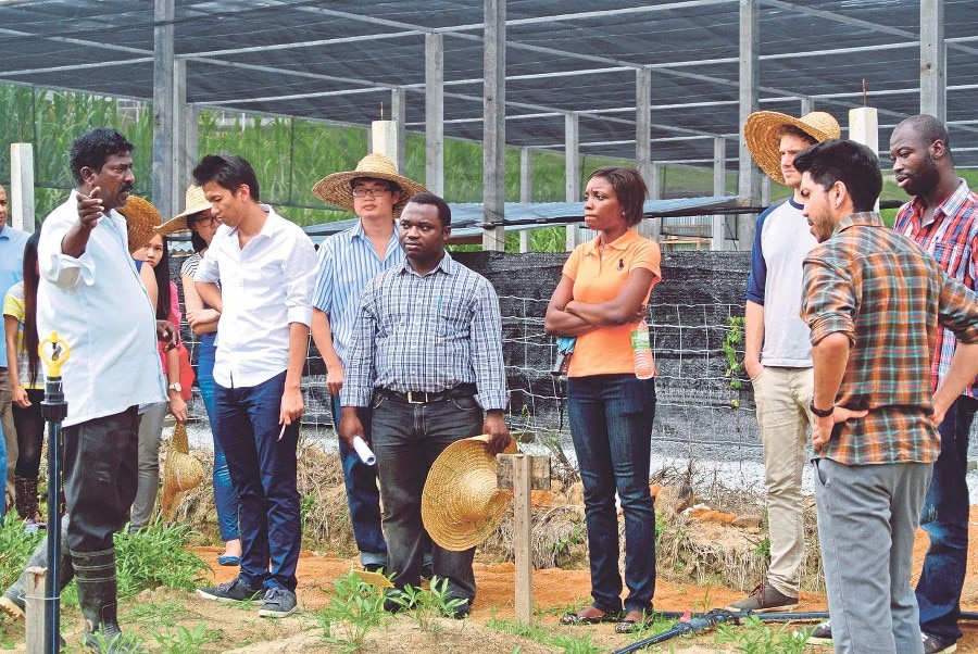 Crops For the Future-University of Nottingham Malaysia Campus Doctoral Training Partnership (CFF-UNMC DTP) programme students learning about field trials at the CFF field research center.