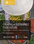 Creating a Sustainable Food Future: A Menu of Solutions to Feed Nearly 10 Billion People by 2050