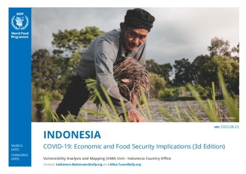 Indonesia: COVID-19: Economic and Food Security Implications (3d Edition)