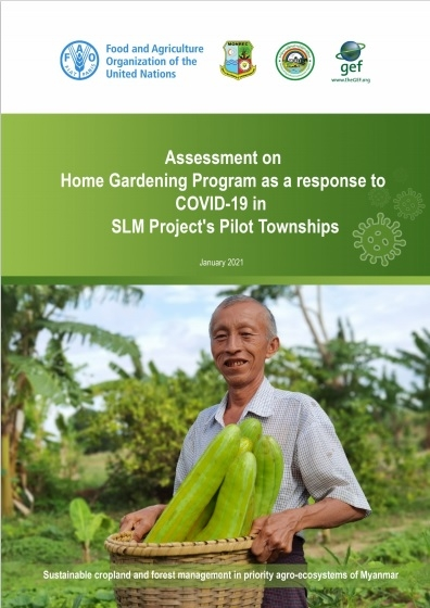 Assessment on Home Gardening Program as a Response to COVID-19 in SLM's Project's Pilot Townships